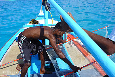 Fishing still is the main income earner for most Maldivian families