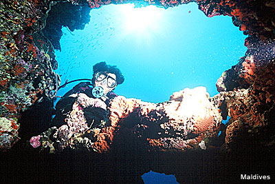 A Diver in the deep blue with corals