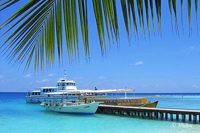 Cruise and sailing boats in Maldives