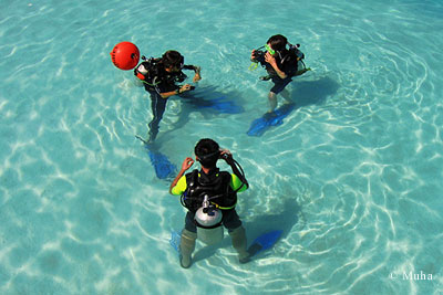 Dive schools giving introductory lessons to beginners